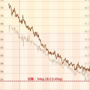 約1年のグラフ