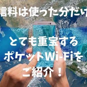 通信料は使った分だけ!とても重宝するポケットWi-Fiをご紹介!