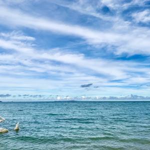 人魚がいるビーチが沖縄にありました