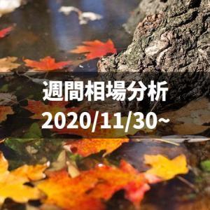 今年も残り一ヶ月!集大成の1万円チャレンジ【2020/11/30〜相場分析】