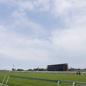 【アメリカジョッキークラブカップ(GⅡ)2021】出走予定馬や有力馬は?