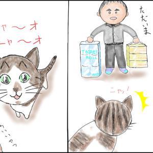 うちのナメ猫たち ~ハル編~