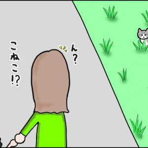 【猫漫画】ソラの話② 友人が仔猫を見つけたときのことを話してくれたよ!