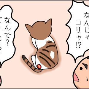 【猫漫画】ボロボロの子猫③ 母猫の残した傷跡