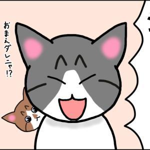 【猫漫画】ボロボロの子猫⑤ 先住猫とご対面! 仲良くなれるかな?