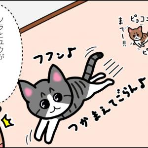 【猫漫画】ボロボロの子猫⑥ 昨日の敵は今日の友!な子猫たち!!