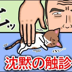 【猫漫画】ボロボロの子猫⑧ 閲覧注意!! 沈黙の診察が始まる!!