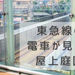 【川崎】東急線で電車が見えるスポットは?車両基地もある元住吉がおすすめ!