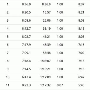 師走に走る10km