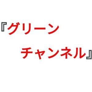 【凱旋門賞2021】フジテレビでの地上波生中継が決定|グリーンチャンネルも無料放送!!