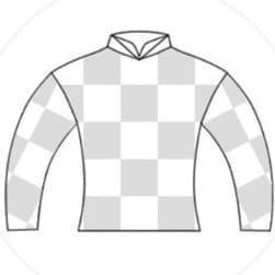 【インゼルTC】募集馬2021を総評【500口/三嶋牧場編】 ルーシーブライドの20/ユイフィーユの20