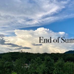 夏の終わりに、ワンコの脱走問題について。