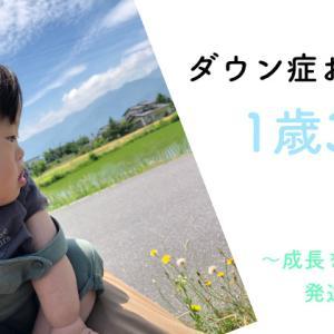 ダウン症おーくん 1歳3ヶ月の様子 〜成長を整理する発達の3観点について〜