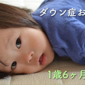 ダウン症おーくん 1歳6ヶ月の様子 〜コミュニケーション面で大きな成長あり〜