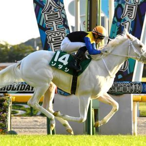 【阪神JF2020】予想見解  2歳女王はこの馬だ!!