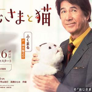 ドラマ おじさまと猫 第2話感想 神田とふくまるの共同生活が始まり・・・ふくまるのぬいぐるみ感は?ネタバレあり