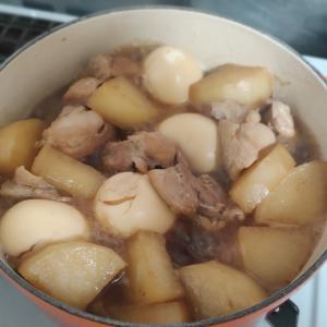 キッチンで過ごす冬、キッチンゲーマーの煮込み料理。