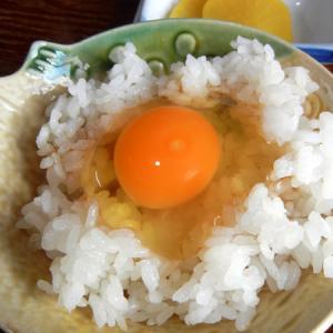 卵食べ放題のたまごかけご飯ツーリングin京都亀岡