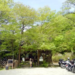 タイカレーがうまい隠れログハウスカフェツーin大阪