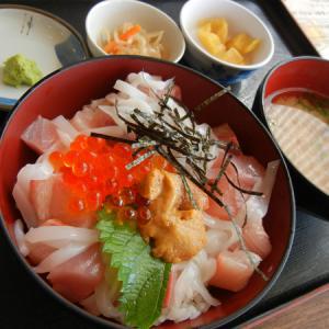 お刺身盛りだくさんの海鮮丼ツーリング