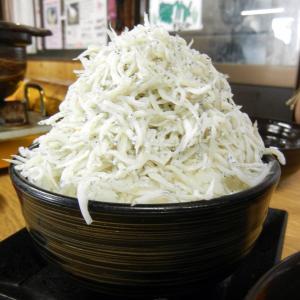 真鯛わさびスープ&テンコ盛りシラス丼ツーリングin加太漁港