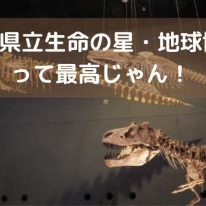 【神奈川県立生命の星・地球博物館口コミ・ブログ】