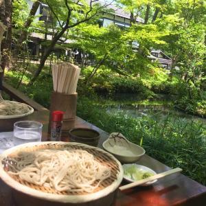 6/11(金)・深大寺でお蕎麦