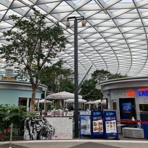 休日のチャンギ空港 Changi Airport Terminal 3