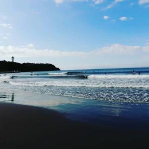 週末の晴れた朝 江ノ島さんぽ