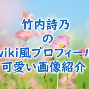 竹内詩乃のwiki風プロフィールを紹介!気になる経歴や出身高校も調査