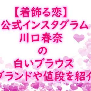 川口春奈3月20日着飾る恋インスタ着用半袖ブラウスのブランドは?値段や通販まとめ