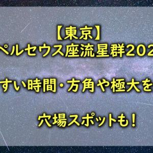 【東京】ペルセウス座流星群2021見やすい時間は?方角や極大を紹介!穴場スポットも!