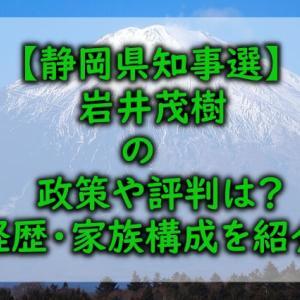 【静岡県知事選】岩井茂樹の政策や評判は?経歴や家族構成を紹介!