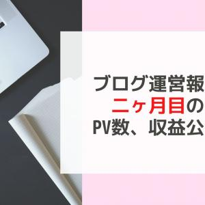 【ブログ運営報告】2ヶ月目のPV数、収益を公開【少し見えてきた】