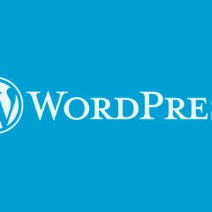 WordPressがエラーで真っ白になってしまったときの対処方法。functions.phpを編集した場合