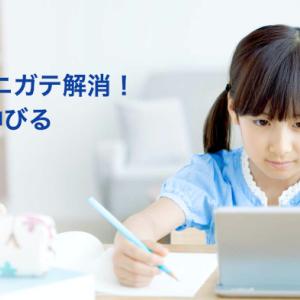 【体験談あり】スタディサプリ小学講座を医大生がレビュー!小学生の勉強の悩みを解決!