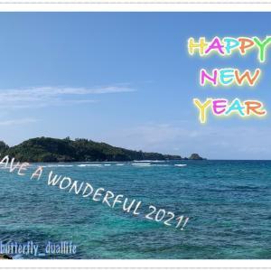 ◆新年のご挨拶◆2016年~2021年の年末年始をさらっと振り返り◆2021年はどんな年にしたいか?◆