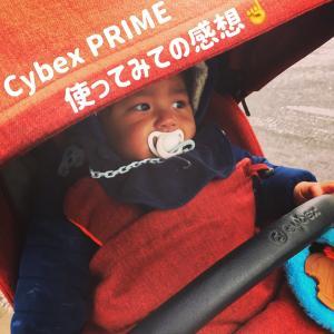 子育てエピソード:ベビーカー編