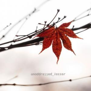 もうすぐ冬