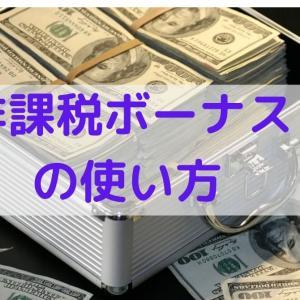 非課税のボーナスの使い方 ~自己投資と事業費用~
