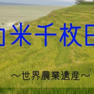 白米千枚田 世界農業遺産「能登の里山里海」の棚田へ行ってきました