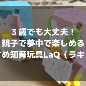 3歳でも大丈夫!親子で夢中で楽しめる おすすめ知育玩具 LaQ(ラキュー)