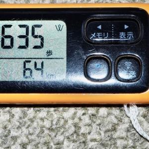10日は7,600歩 歩きました → 1万歩は未だ遠いね