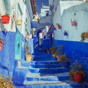 モロッコにフランス語留学する意味ってある?メリットとデメリットの検証結果