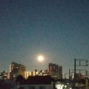 46年ぶりのハロウイン満月は見ると幸せになるというブルームーン