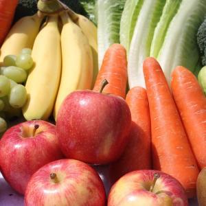 【食品ロス】大量の食品が捨てられている現実。それを生かす事業。