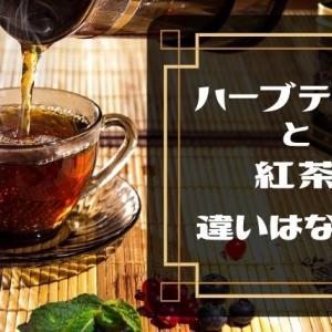 ハーブティーと紅茶の違いは原料!?特徴・効能・種類をわかりやすく解説!