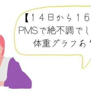 【14日~16日まで】記録まとめです。PMSで絶不調でした。体重グラフ載せますが、やはり変動ありました。