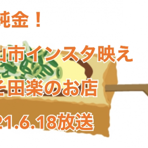 【PS純金ゴールド!】愛知県犬山市 インスタグラマーも夢中 カラフル田楽!のお店はどこ?