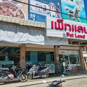 タイのペットショップ事情